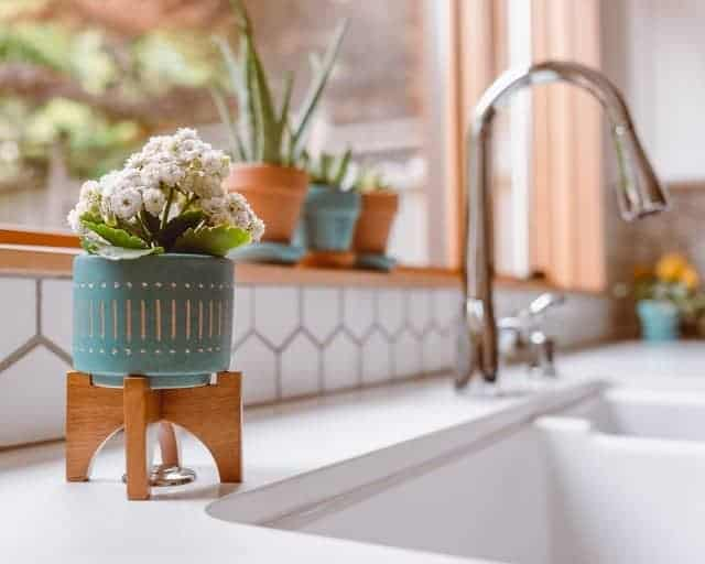 clean kitchen sink with flowers